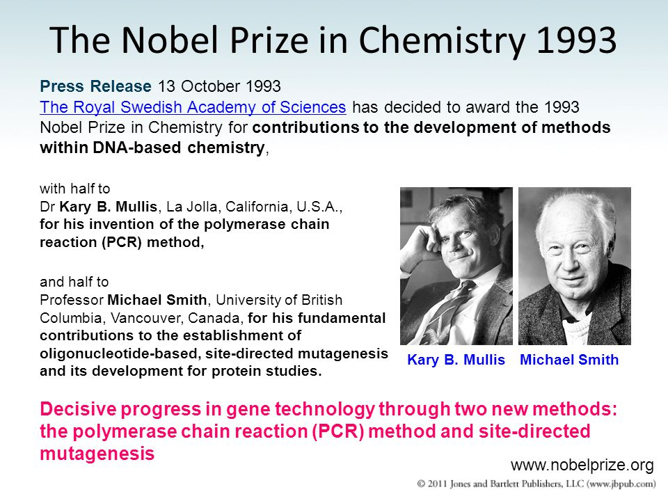 The Nobel Prize in Chemistry 1993