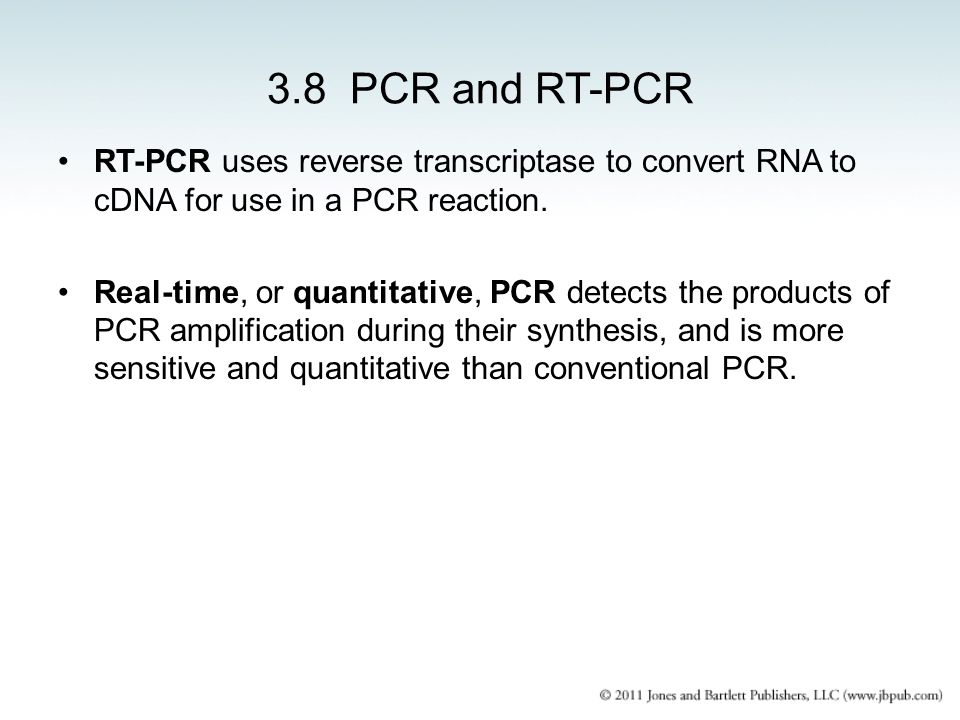 3.8 PCR and RT-PCR RT-PCR uses reverse transcriptase to convert RNA to cDNA for use in a PCR reaction.