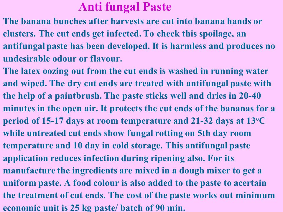 Anti fungal Paste The banana bunches after harvests are cut into banana hands or clusters.