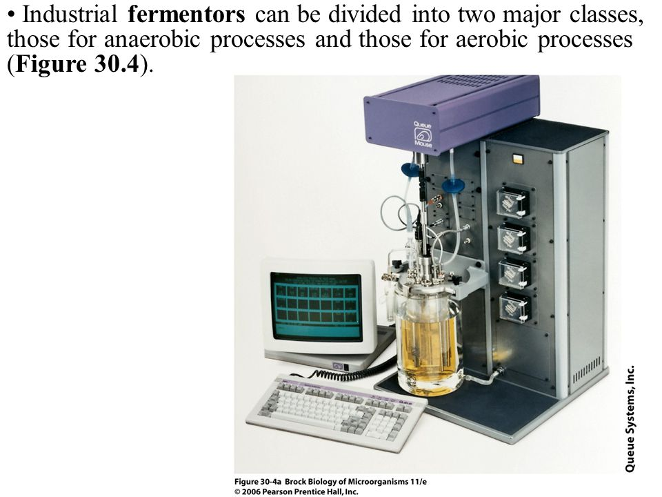 Industrial fermentors can be divided into two major classes, those for anaerobic processes and those for aerobic processes (Figure 30.4).