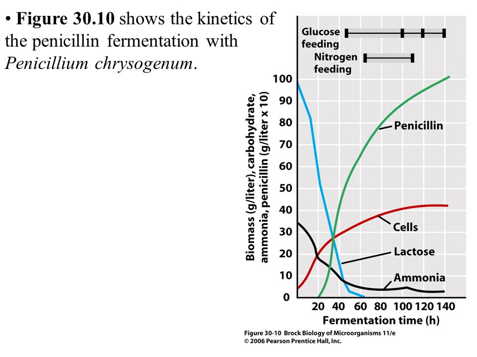Figure 30.10 shows the kinetics of the penicillin fermentation with Penicillium chrysogenum.