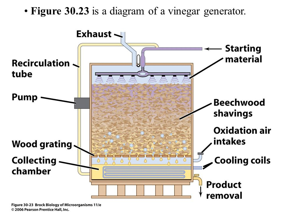 Figure 30.23 is a diagram of a vinegar generator.