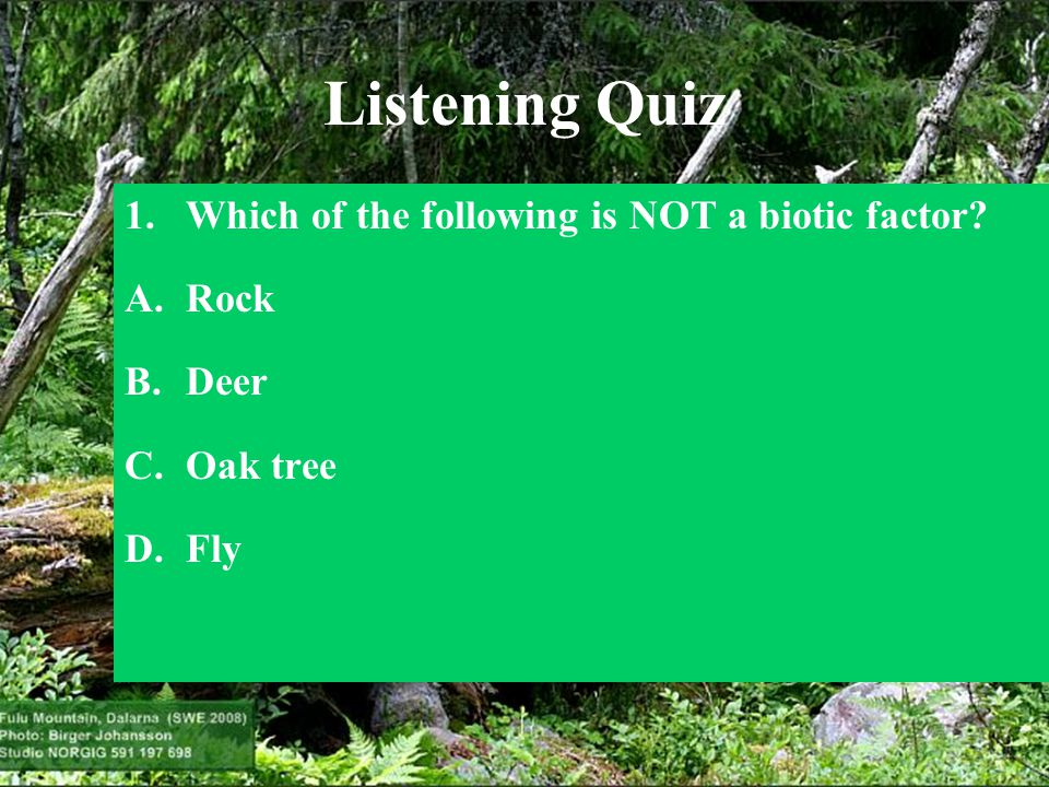 Listening Quiz Which of the following is NOT a biotic factor Rock