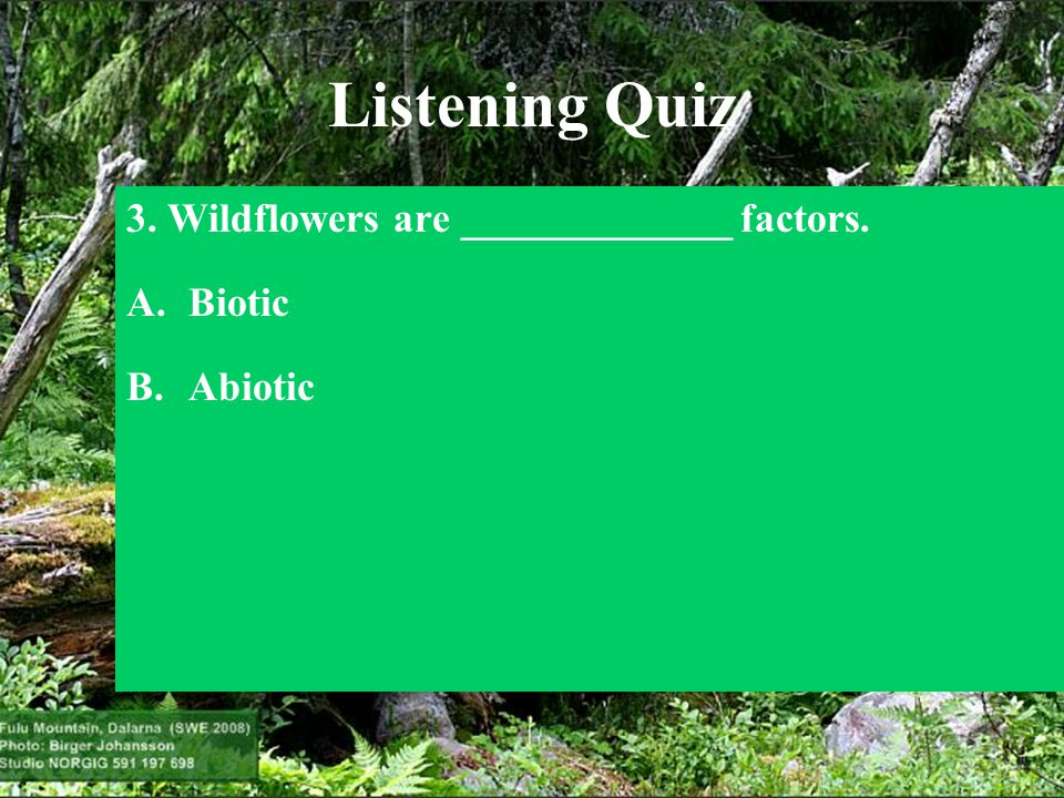 Listening Quiz 3. Wildflowers are _____________ factors. Biotic