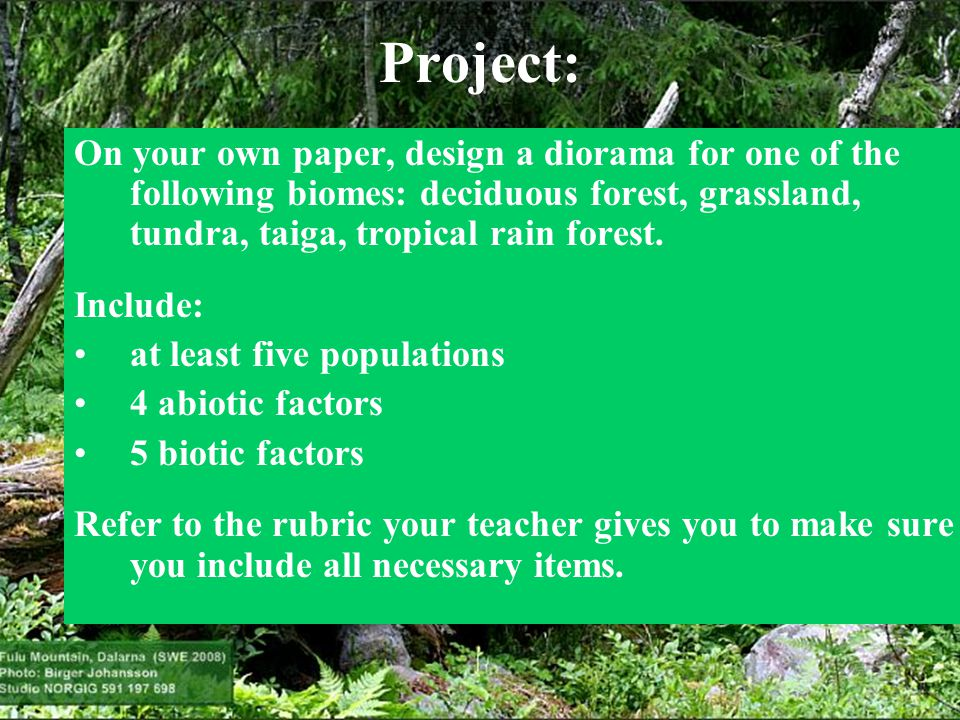 Project: On your own paper, design a diorama for one of the following biomes: deciduous forest, grassland, tundra, taiga, tropical rain forest.