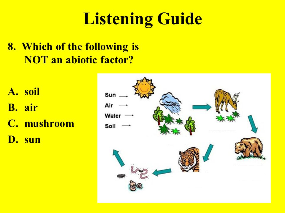 Listening Guide 8. Which of the following is NOT an abiotic factor