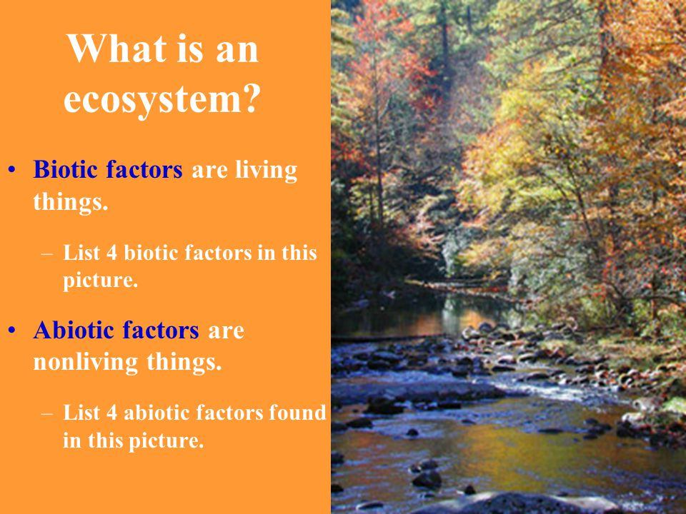 What is an ecosystem Biotic factors are living things.