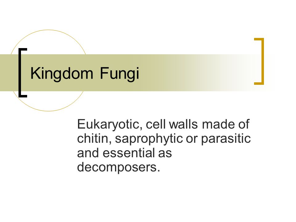 Kingdom Fungi Eukaryotic, cell walls made of chitin, saprophytic or parasitic and essential as decomposers.