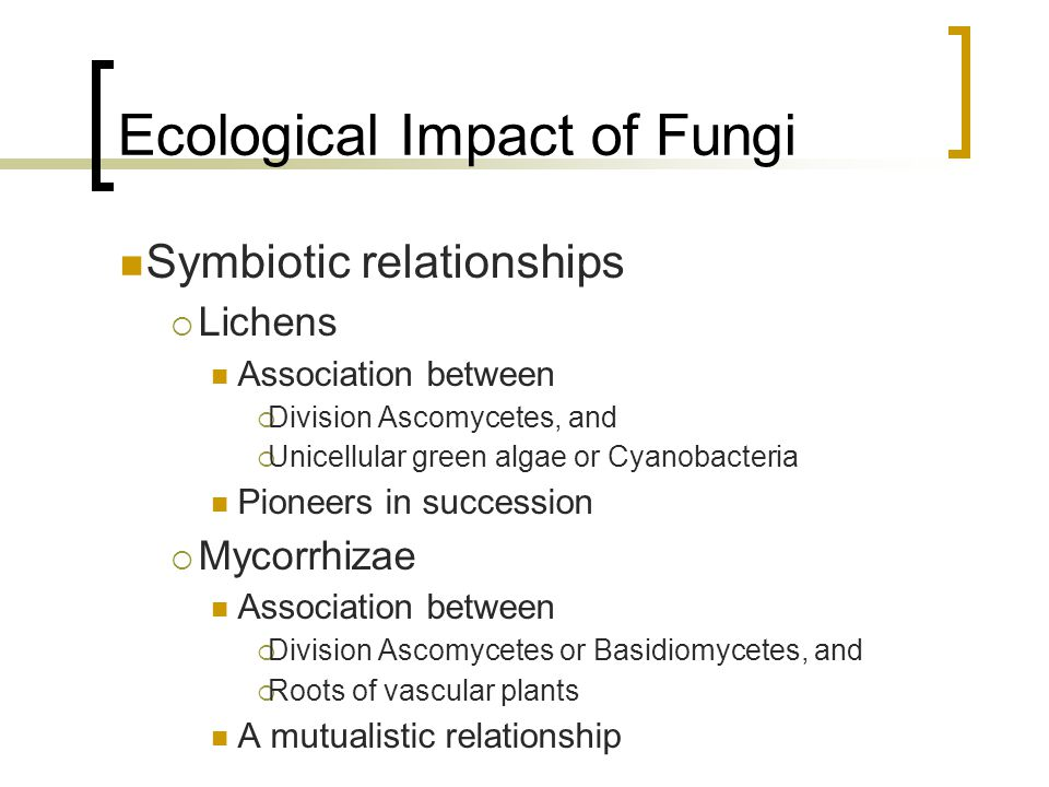 Ecological Impact of Fungi