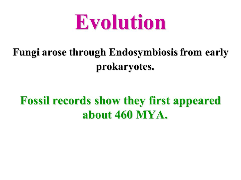 Fossil records show they first appeared about 460 MYA.