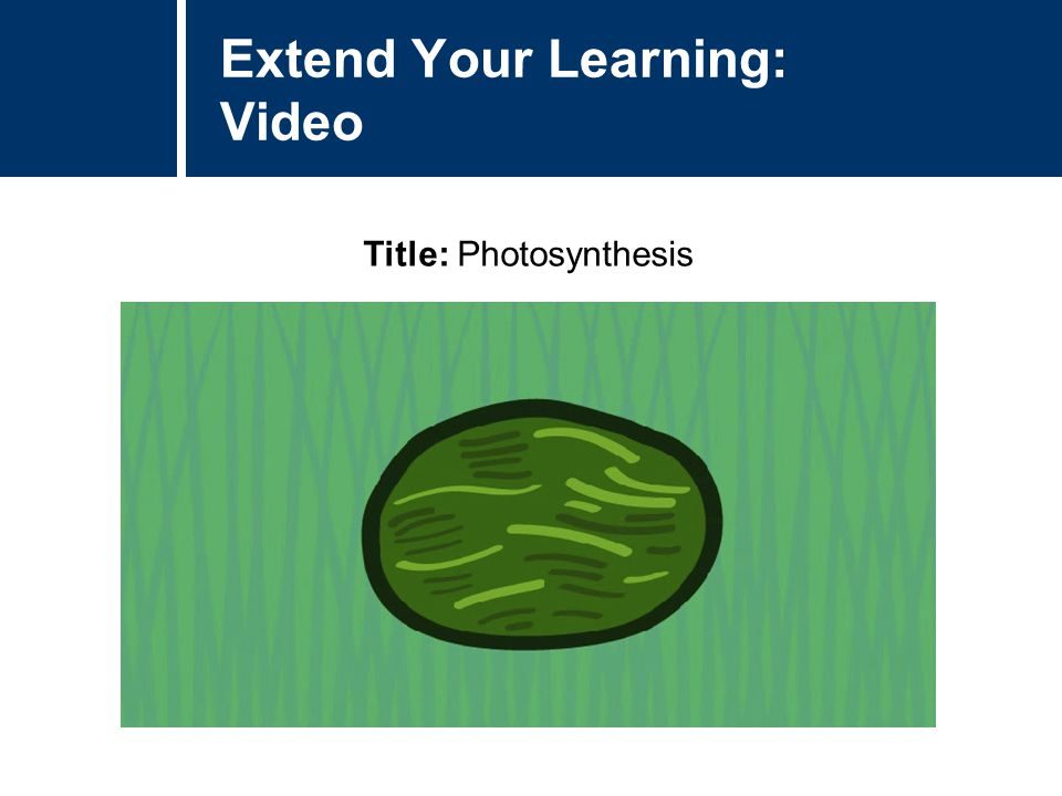Extend Your Learning: Video