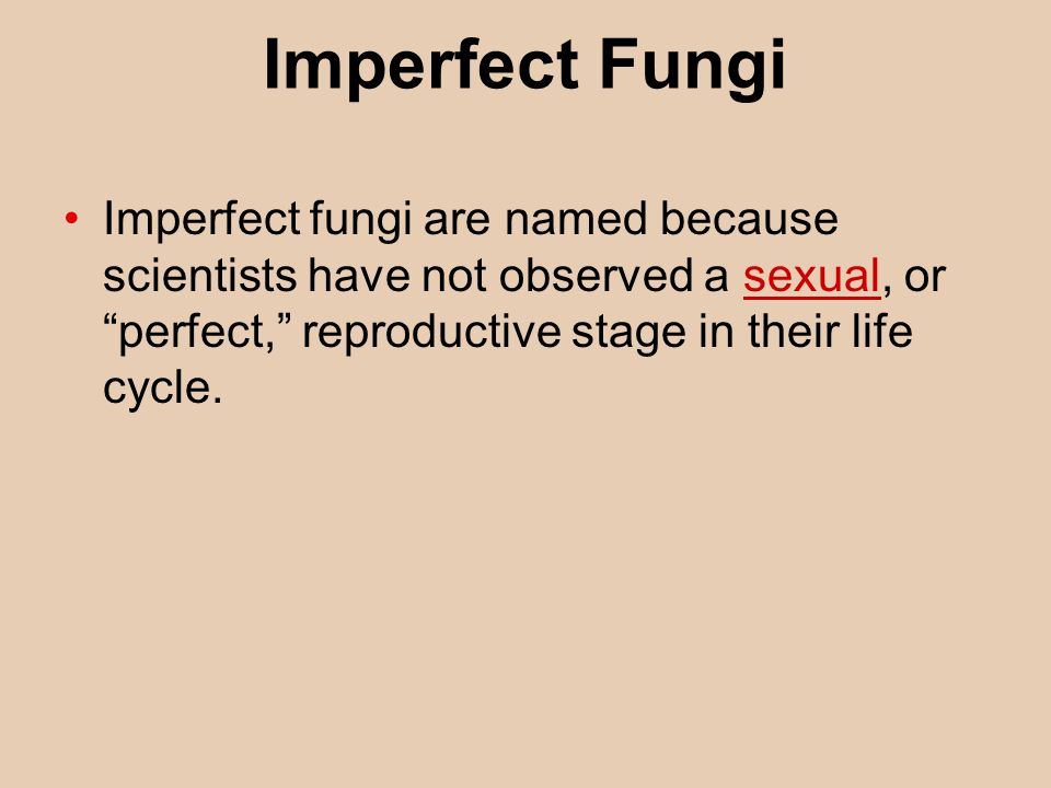 Imperfect Fungi Imperfect fungi are named because scientists have not observed a sexual, or perfect, reproductive stage in their life cycle.