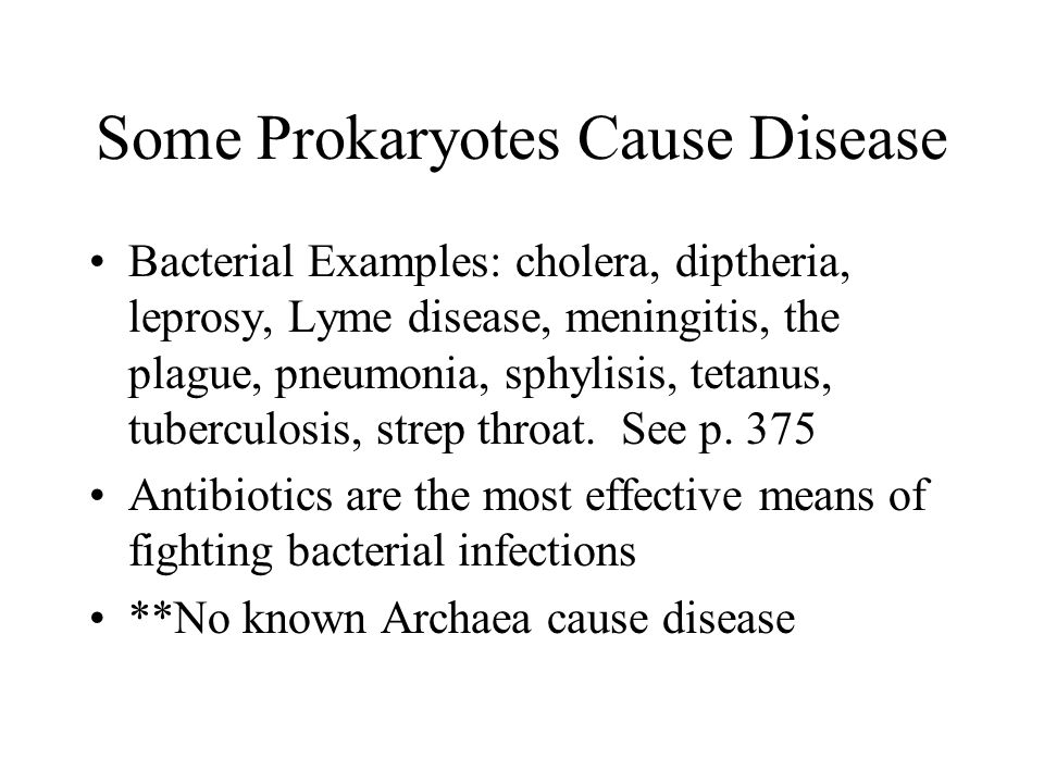 Some Prokaryotes Cause Disease