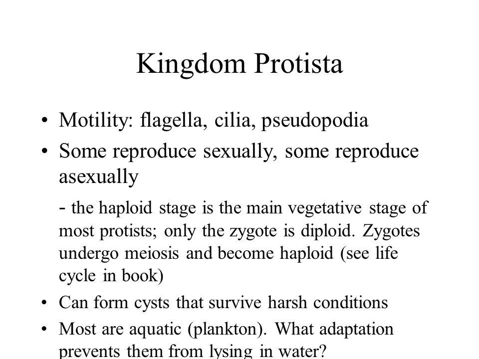 Kingdom Protista Motility: flagella, cilia, pseudopodia