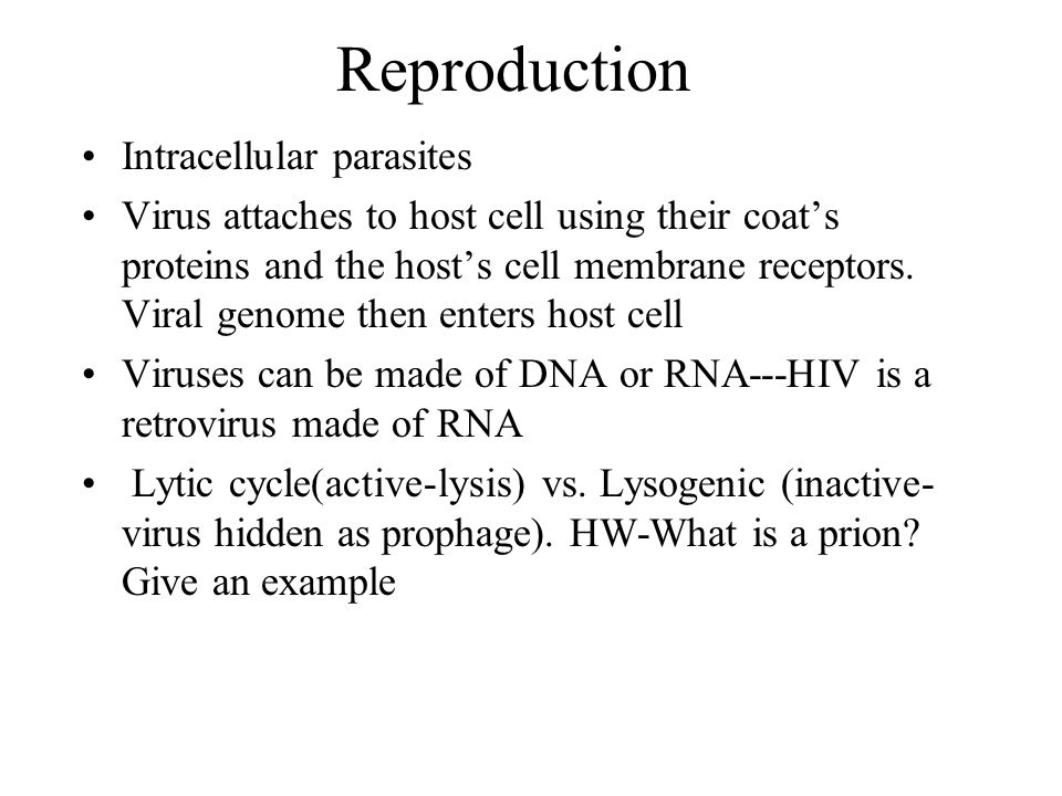 Reproduction Intracellular parasites