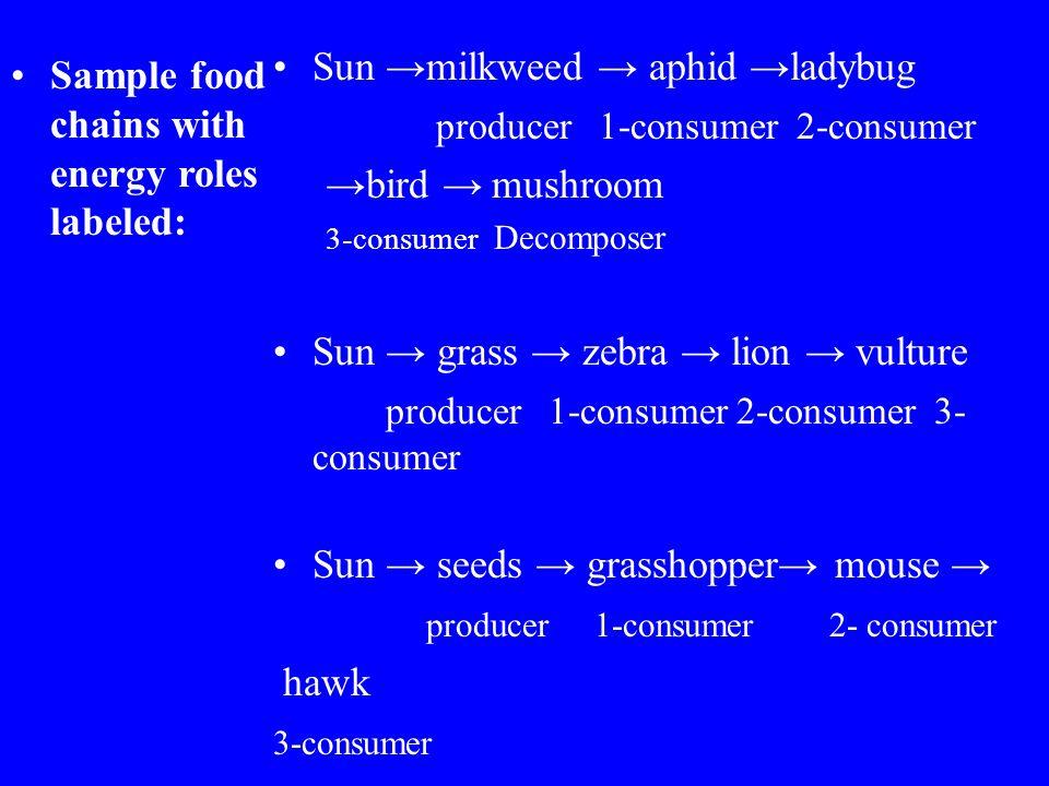 Sun →milkweed → aphid →ladybug producer 1-consumer 2-consumer