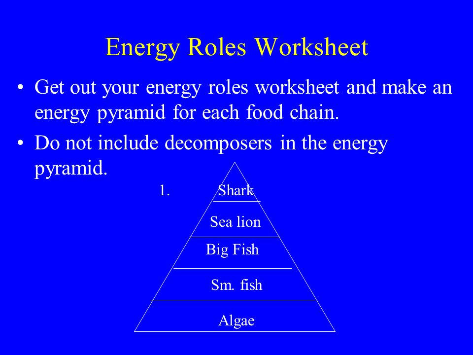 Energy Roles Worksheet