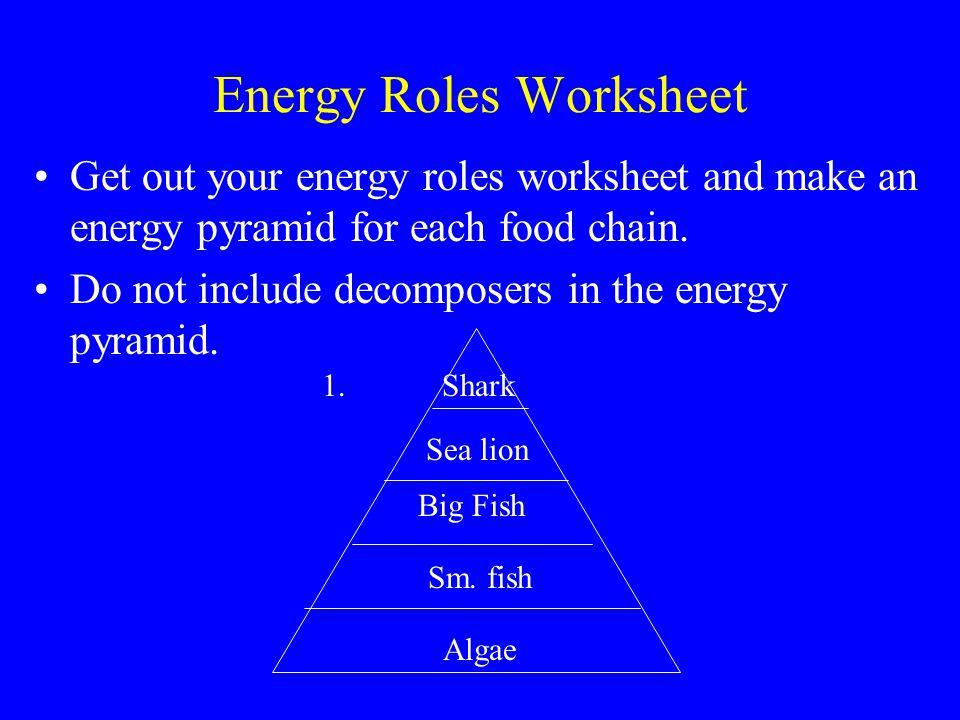 Energy pyramid worksheet 4th grade