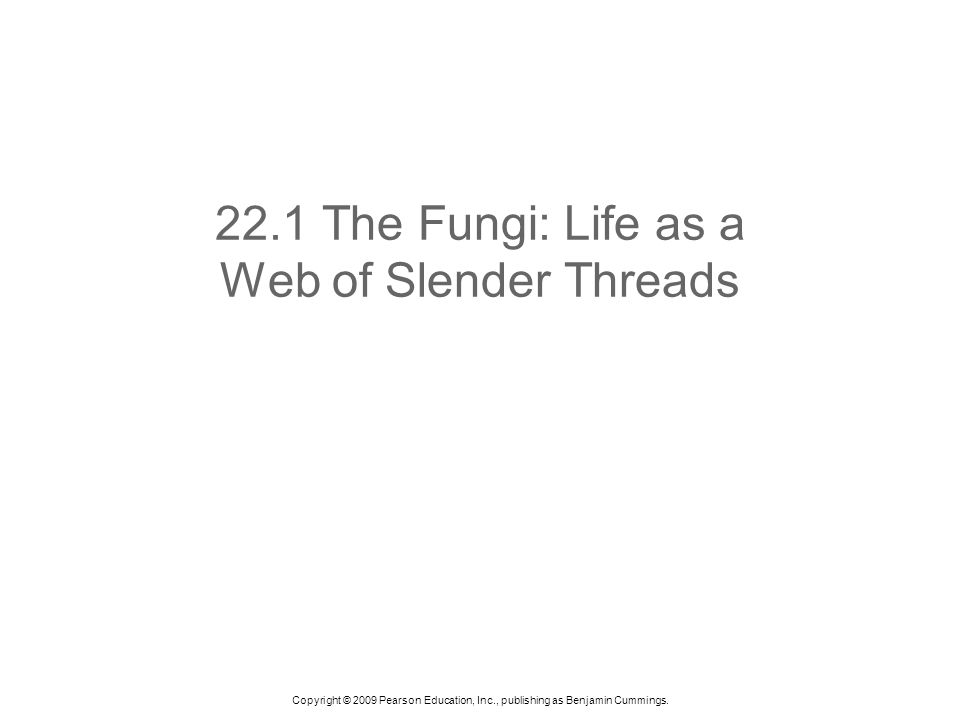 22.1 The Fungi: Life as a Web of Slender Threads