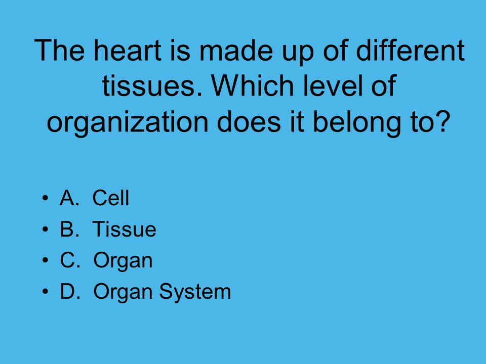 The heart is made up of different tissues
