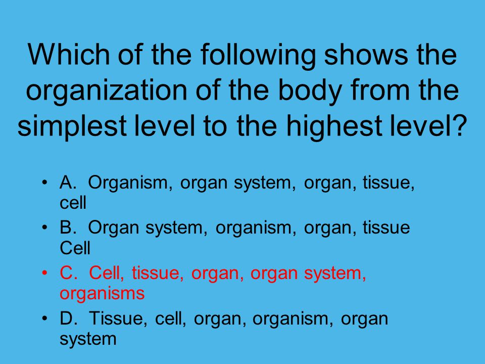 Which of the following shows the organization of the body from the simplest level to the highest level