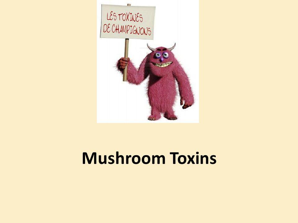 Mushroom Toxins