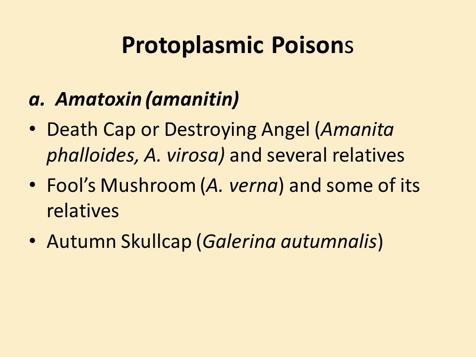 Protoplasmic Poisons Amatoxin (amanitin)