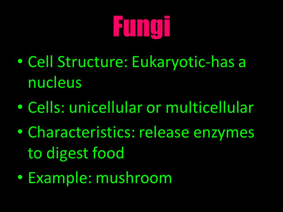 Fungi Cell Structure: Eukaryotic-has a nucleus