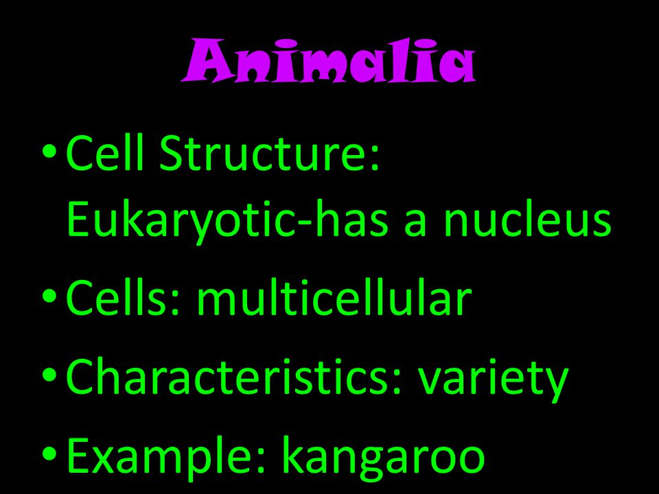 Animalia Cell Structure: Eukaryotic-has a nucleus Cells: multicellular