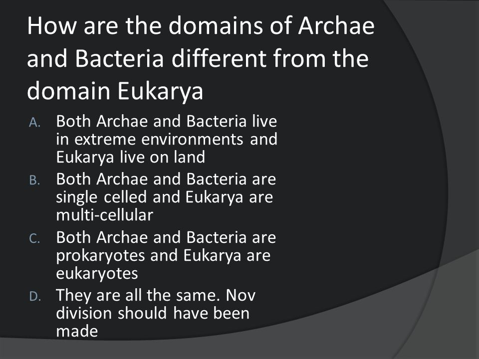 How are the domains of Archae and Bacteria different from the domain Eukarya