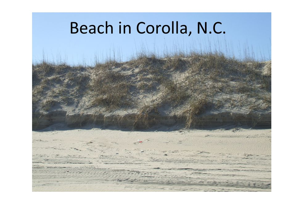 Beach in Corolla, N.C.