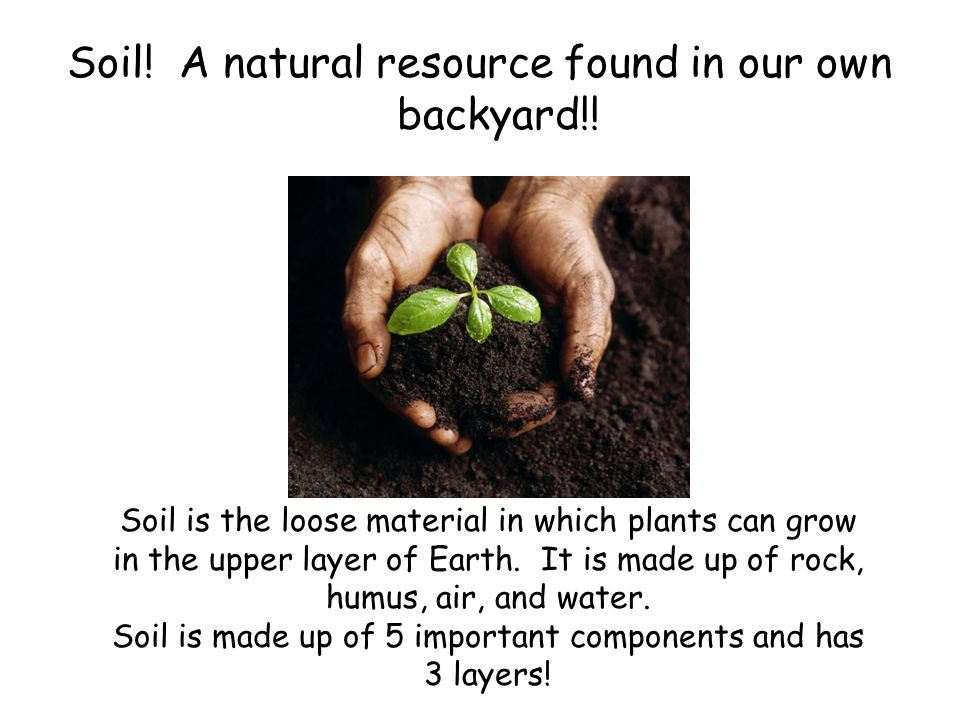 Soil! A natural resource found in our own backyard!!