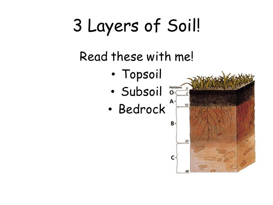 3 Layers of Soil! Read these with me! Topsoil Subsoil Bedrock