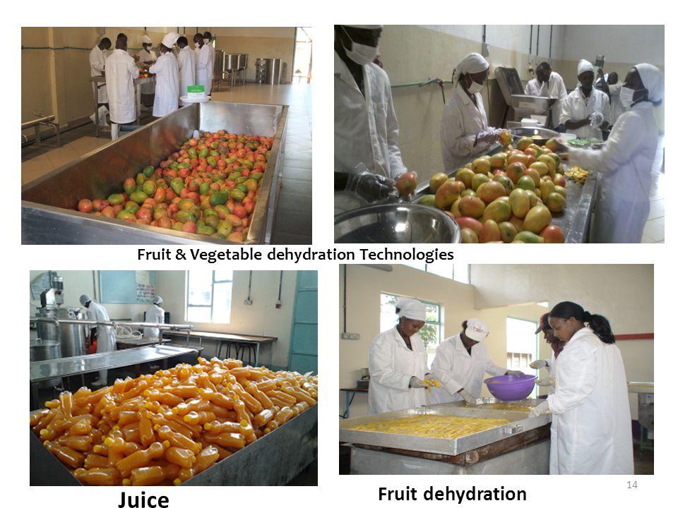 Fruit & Vegetable dehydration Technologies