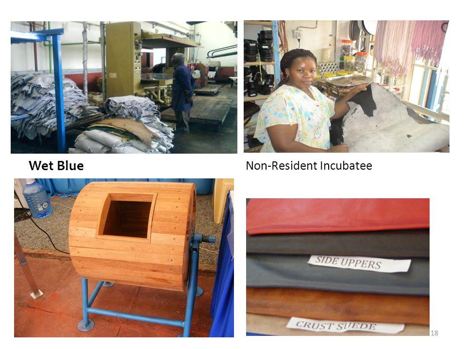 Wet Blue Non-Resident Incubatee