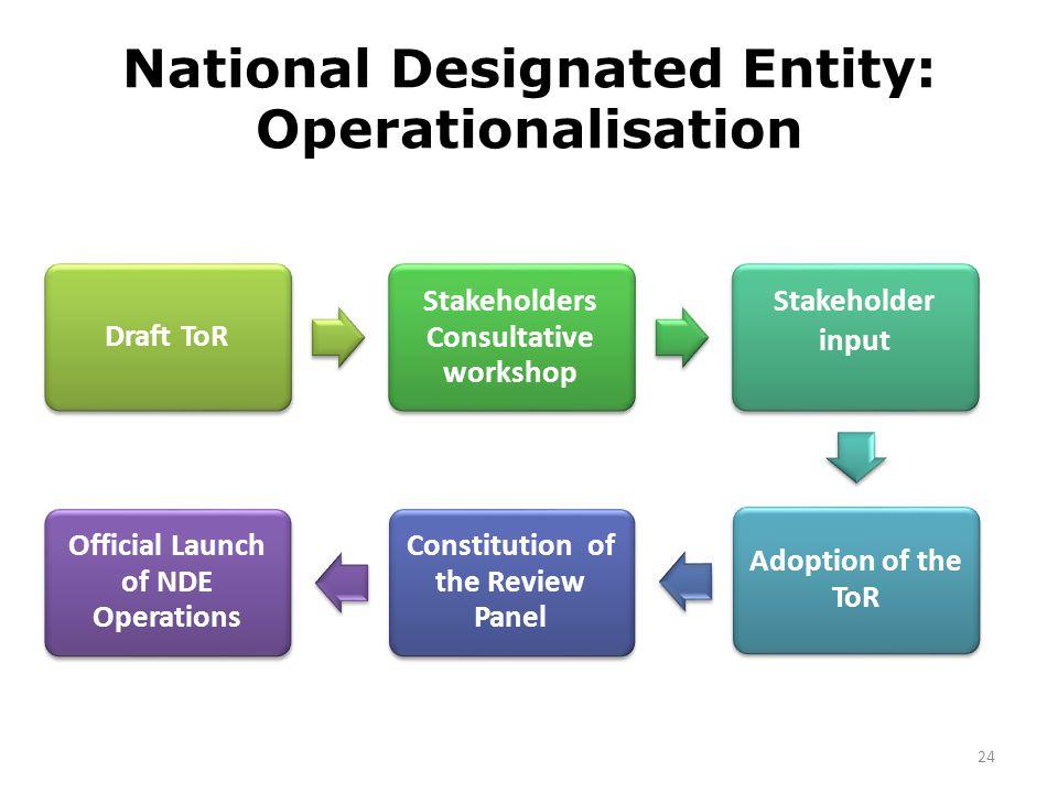 National Designated Entity: Operationalisation