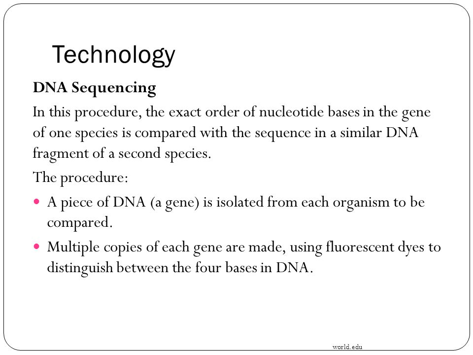 Technology DNA Sequencing