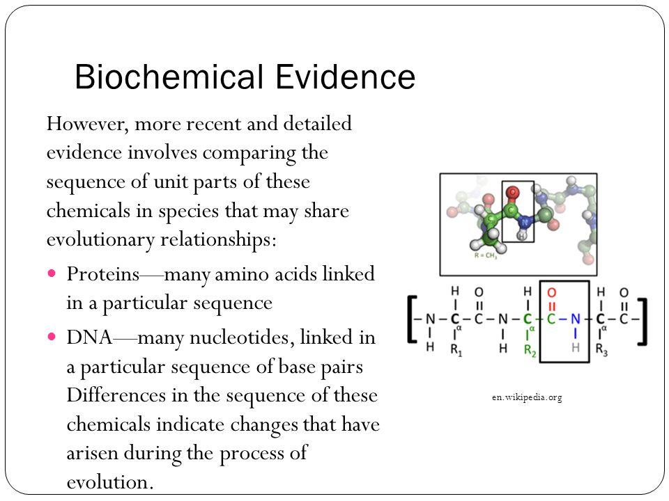 Biochemical Evidence