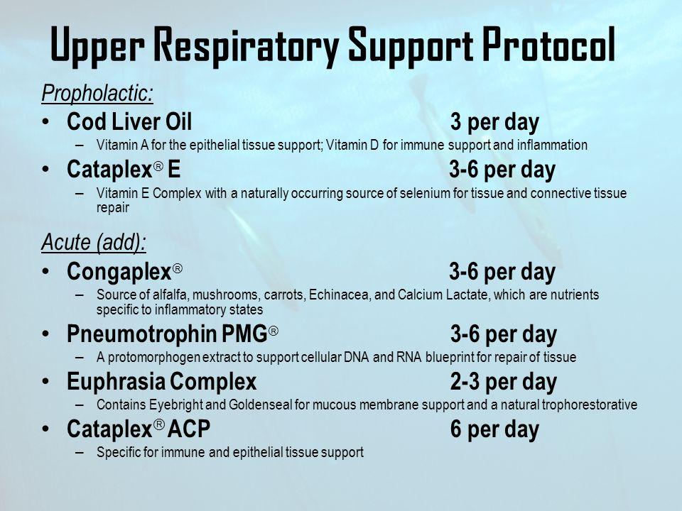 Upper Respiratory Support Protocol