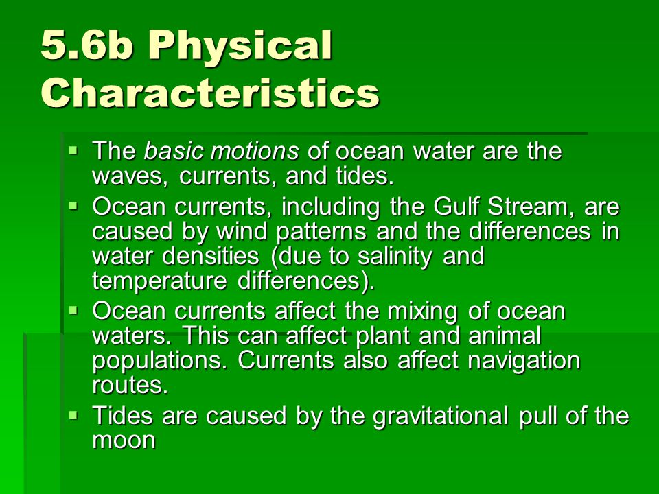 5.6b Physical Characteristics