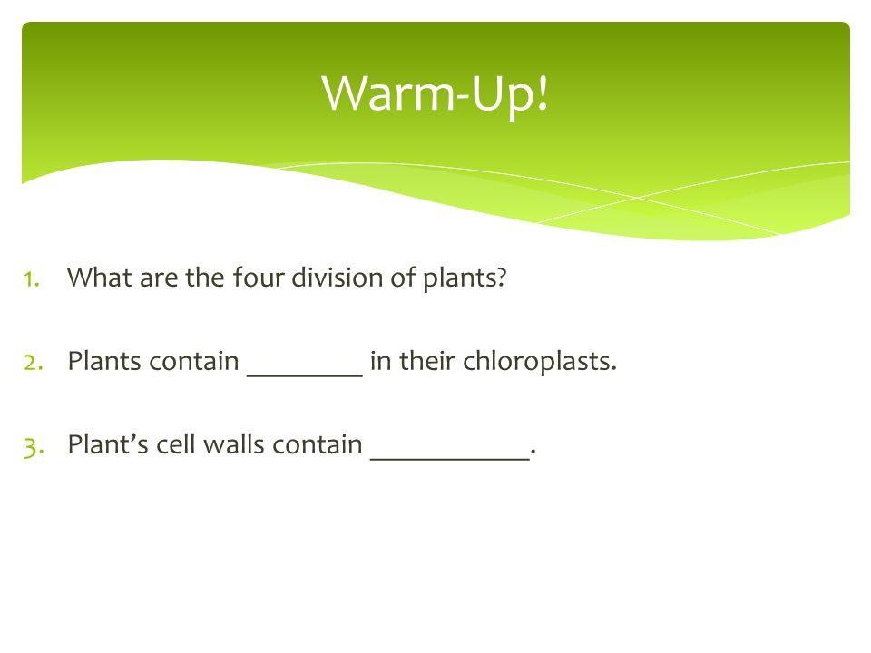 Warm-Up! What are the four division of plants