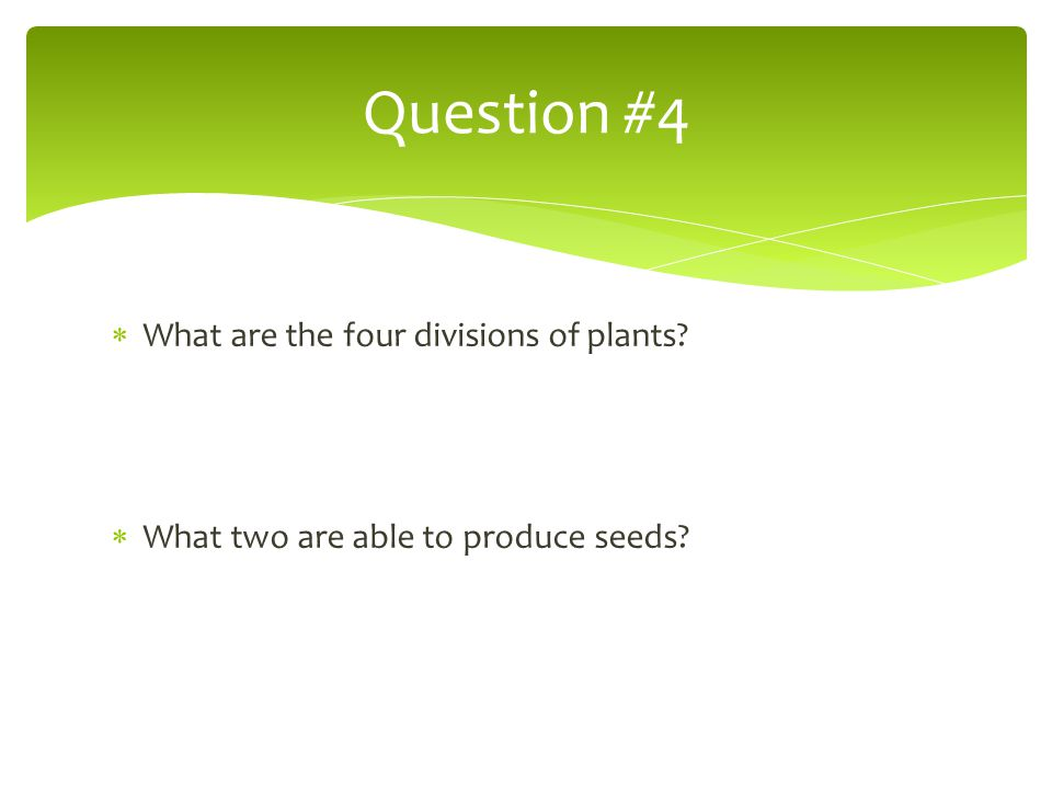 Question #4 What are the four divisions of plants