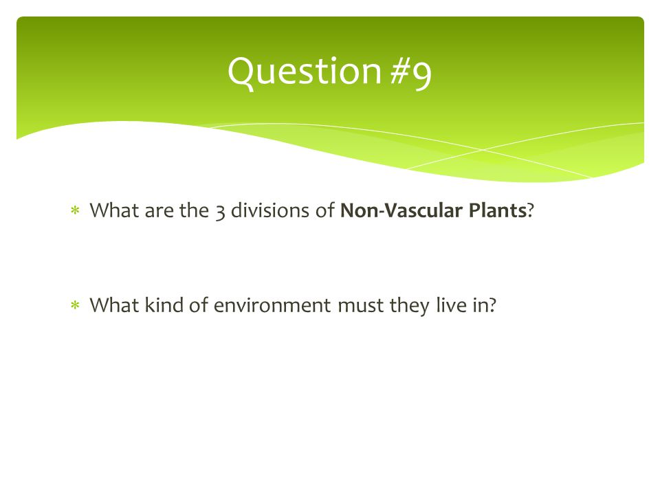 Question #9 What are the 3 divisions of Non-Vascular Plants
