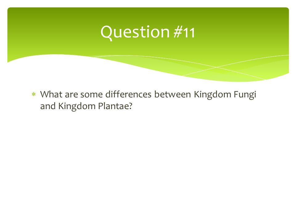 Question #11 What are some differences between Kingdom Fungi and Kingdom Plantae