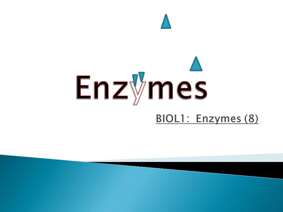 Enzymes BIOL1: Enzymes (8)