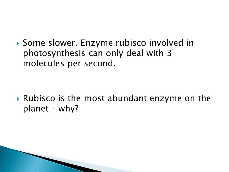 Some slower. Enzyme rubisco involved in photosynthesis can only deal with 3 molecules per second.