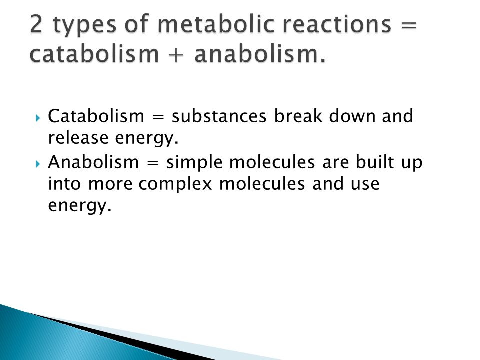 2 types of metabolic reactions = catabolism + anabolism.