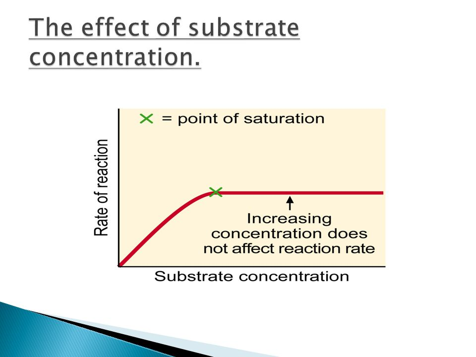 The effect of substrate concentration.