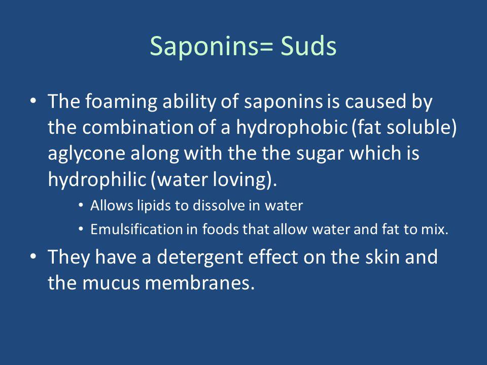 Saponins= Suds