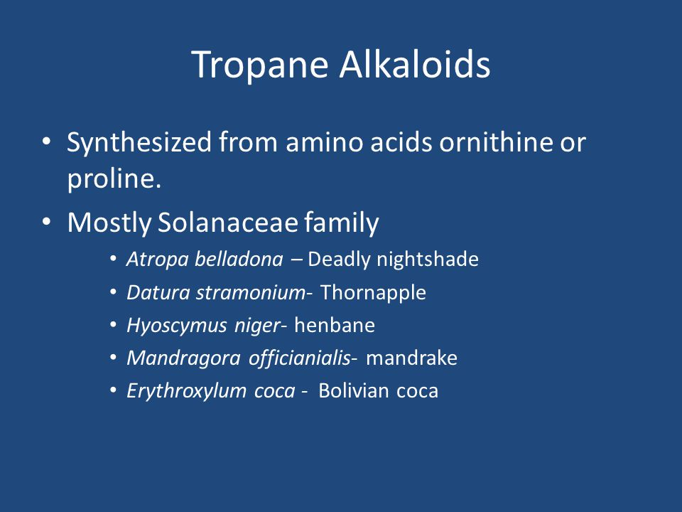 Tropane Alkaloids Synthesized from amino acids ornithine or proline.